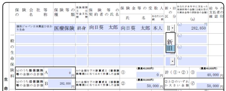 給与所得者の保険料控除申告書記入例2