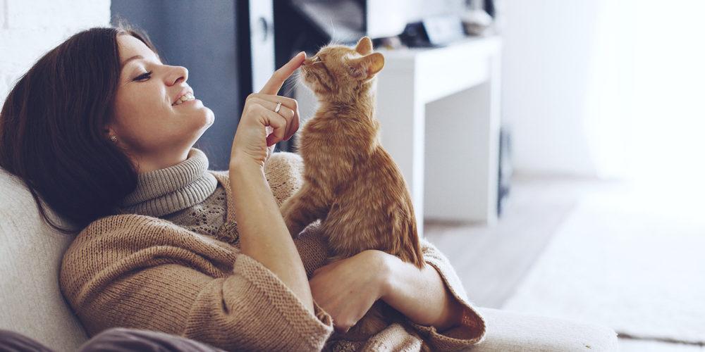 猫のペット保険加入メリット・デメリット