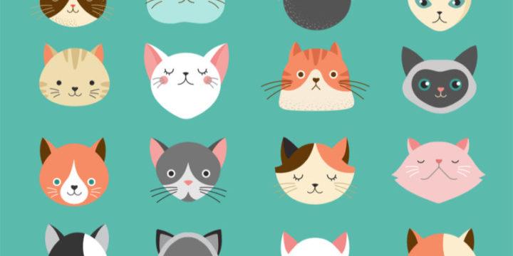 【FPおすすめ】猫のペット保険ランキング!そもそも必要?など気になる疑問も解説します
