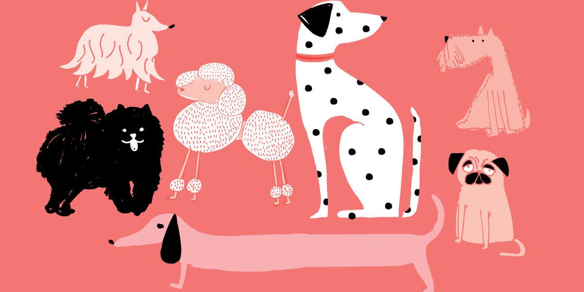 犬のペット保険は必要?