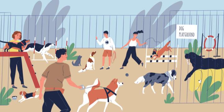 犬におすすめのペット保険をFPが徹底比較!口コミ・評判の人気3選をご紹介
