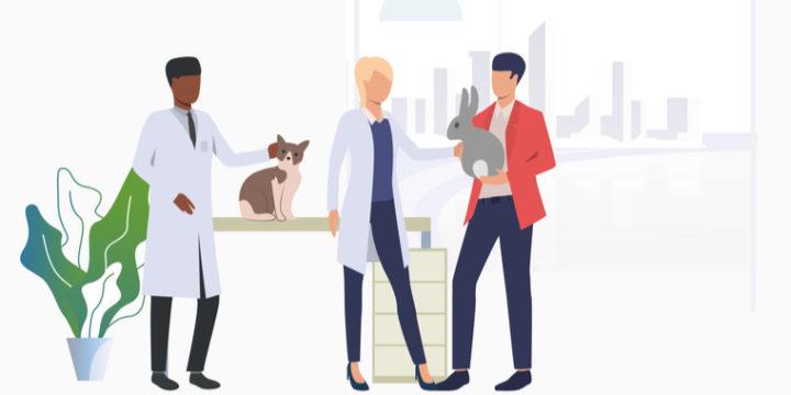 うさぎにおすすめのペット保険、どれが人気?評判は?
