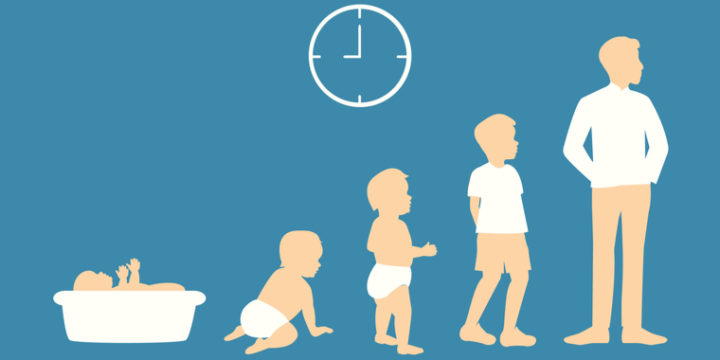 死亡保険の必要性は子供の成長に伴って下がっていく