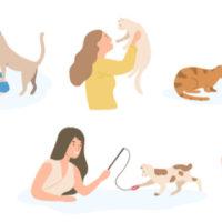 猫におすすめのペット保険ランキング!人気比較&選び方のポイントをFPが解説