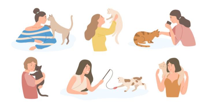 比較解説付き!猫におすすめ人気ペット保険ランキング