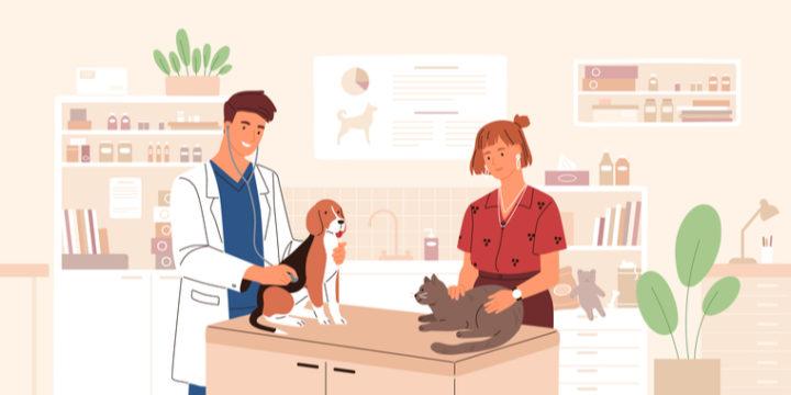 おすすめ&人気のペット保険比較ランキング